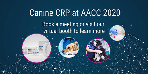 Canine CRP at AACC 2020