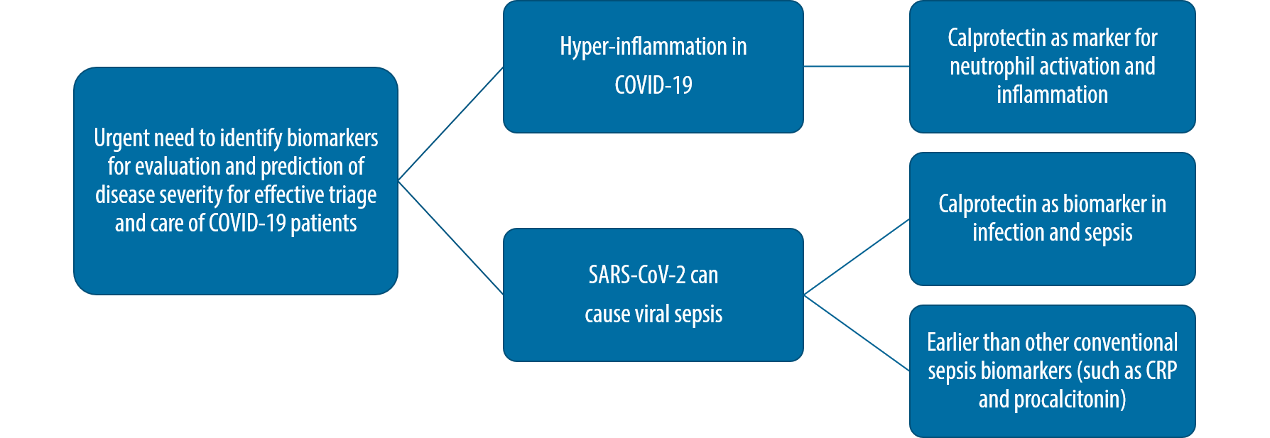 Calprotectin in SARS-CoV-2 infections