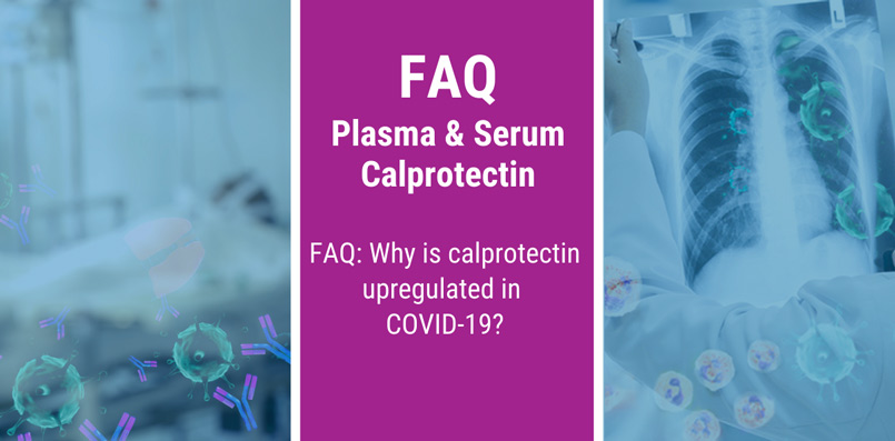 FAQ: Why is calprotectin upregulated in COVID-19?